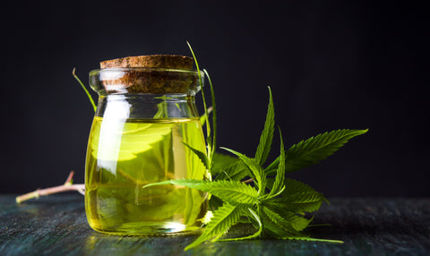 Your Guide to CBD Oils