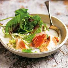 thai coconut and salmon soup