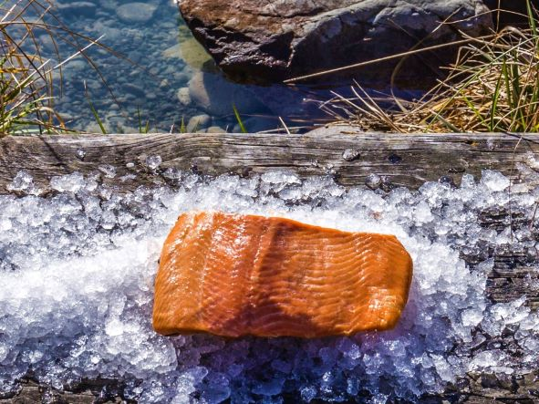 Oak hot smoked High Country Salmon