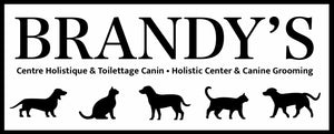 Brandy's Holistic Center & Canine Grooming