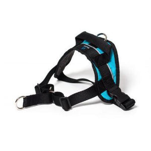Walking Harness - Brandy's Holistic Center & Canine Grooming