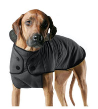 Load image into Gallery viewer, Belted Coat - Brandy's Holistic Center & Canine Grooming