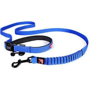 Road Runner Leash - Brandy's Holistic Center & Canine Grooming