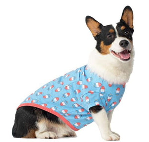 Popsicle Sweater - Brandy's Holistic Center & Canine Grooming