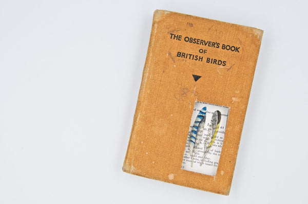 Observer Book - Peter Hall & Son