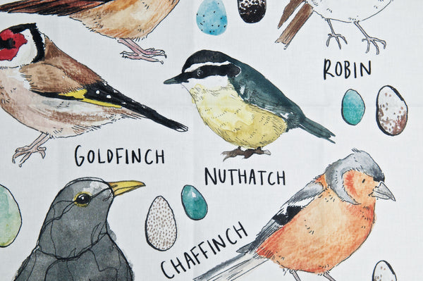 Types of Birds Tea Towel - Peter Hall & Son