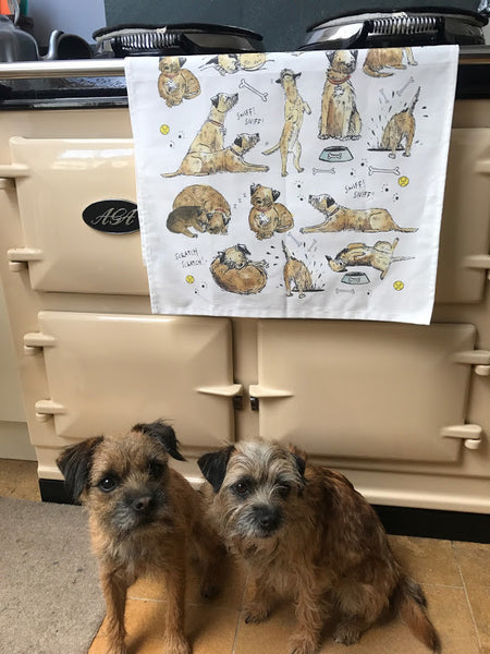 Border Terrier Tea Towel - Peter Hall & Son