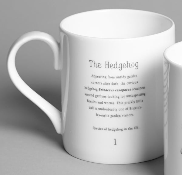 Hedgehog Mug - Peter Hall & Son