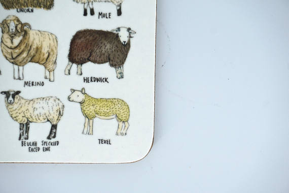 Breeds of Sheep Coaster - Peter Hall & Son