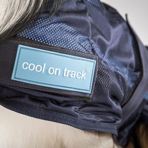 Cool On Track Dog Rug