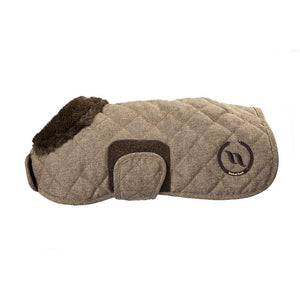 Haze Collection Dog Rug