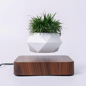 MagicAir Bonsai Pot