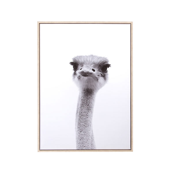 "Canvas Wall Art - Ostrich (28"" x 20"")"