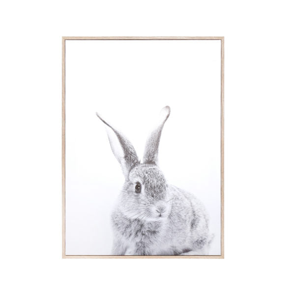 "Canvas Wall Art - Rabbit (28"" x 20"")"