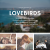 """Lovebirds"" Bundle 