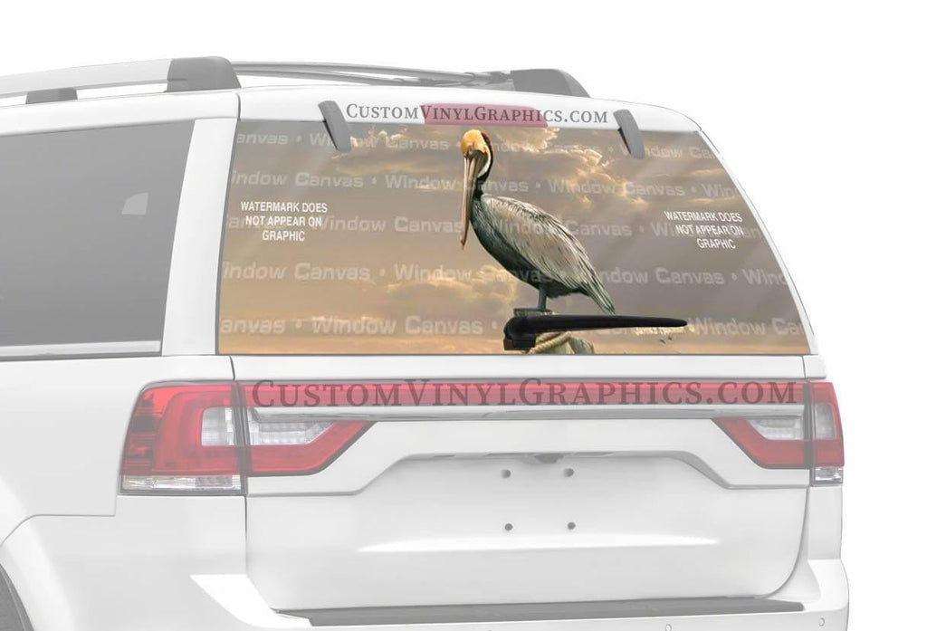Window Canvas Pelican Rear Window Graphic