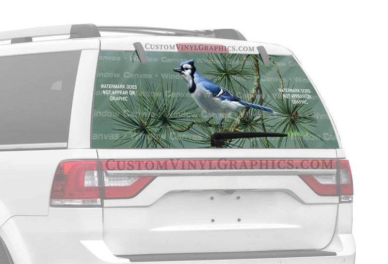 Window Canvas Blue Jay Rear Window Graphic