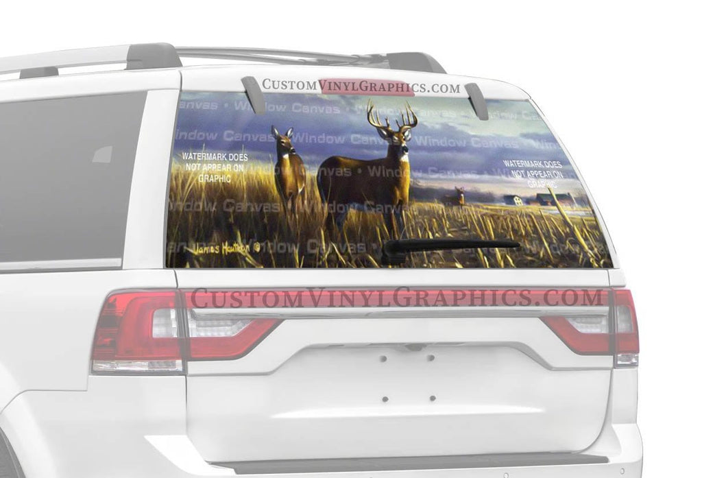 Window Canvas Local Legend Rear Window Graphic