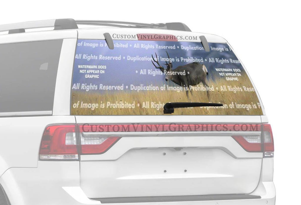 Window Canvas Buck Dream Rear Window Graphic