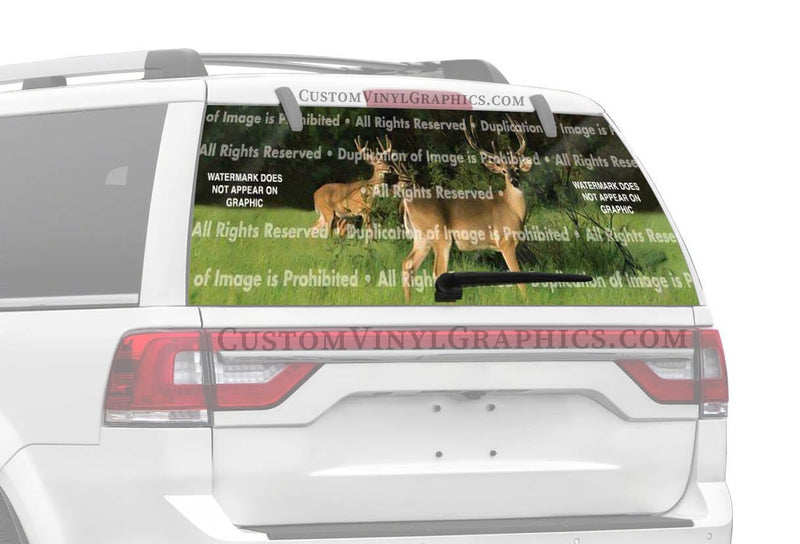 Window Canvas Buck Fever Rear Window Graphic