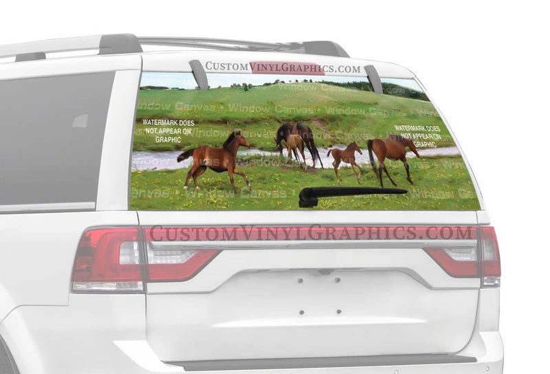 Window Canvas Wild Gallop Rear Window Graphic