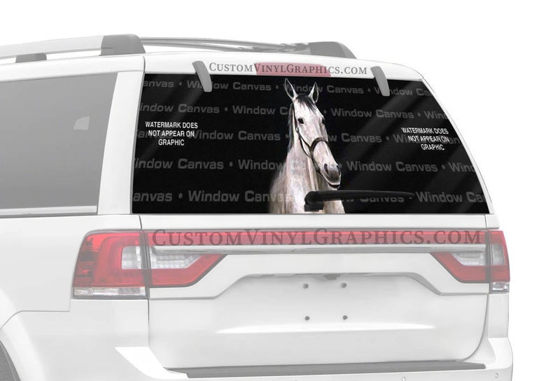 Window Canvas Bobs Horse Rear Window Graphic