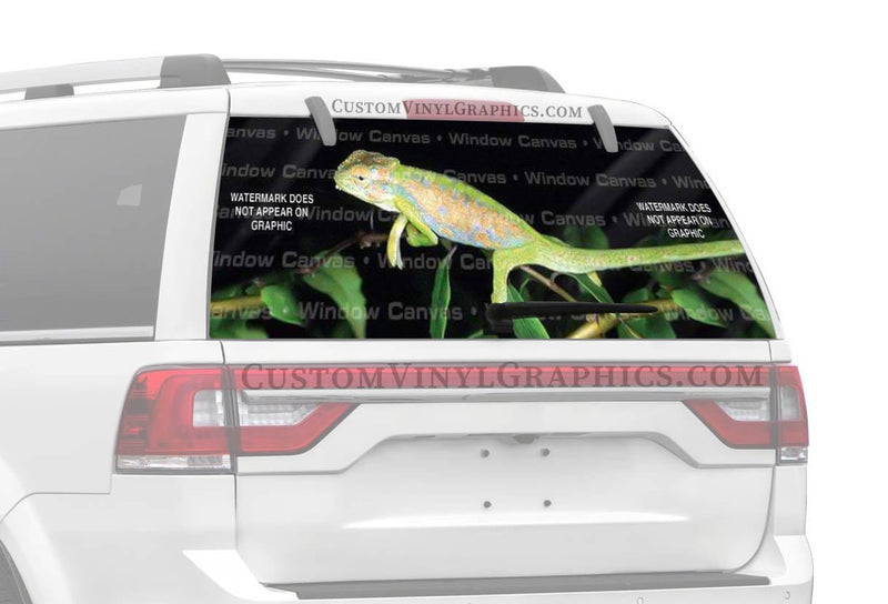 Window Canvas Natures Painter Rear Window Graphic
