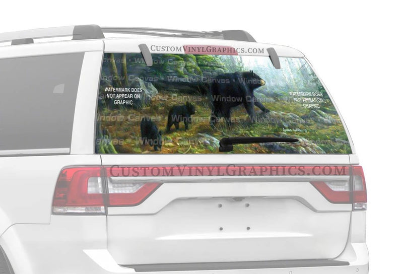 Window Canvas Northern Explorers Rear Window Graphic