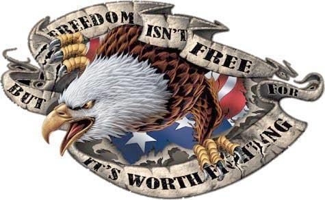 Freedom Isn't Free Eagle Vinyl Graphic - Custom Vinyl Graphics