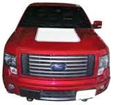 F-150 Hood Patch - Custom Vinyl Graphics