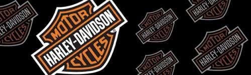 Bar & Shield Logo Angled Color Harley-Davidson Rear Window Graphic - Custom Vinyl Graphics