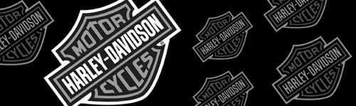 Bar & Shield Logo Angled Smoke Harley-Davidson Rear Window Graphic - Custom Vinyl Graphics