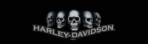 Dark Skull Harley-Davidson Rear Window Graphic - Custom Vinyl Graphics