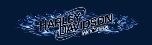 Fire Angel Harley-Davidson Rear Window Graphic - Custom Vinyl Graphics