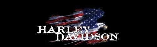 Glory Eagle Harley-Davidson Rear Window Graphic - Custom Vinyl Graphics