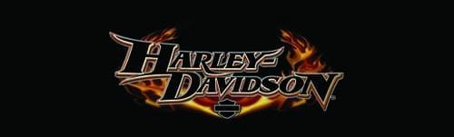 Glow Name Harley-Davidson Rear Window Graphic - Custom Vinyl Graphics