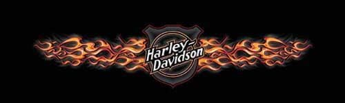 Hot Shield Harley-Davidson Rear Window Graphic - Custom Vinyl Graphics