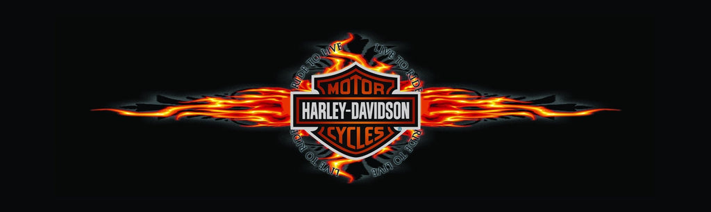 Hot Spin Harley-Davidson Rear Window Graphic - Custom Vinyl Graphics