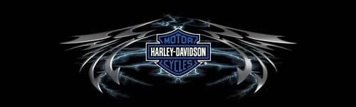 Lightning Wing Harley-Davidson Rear Window Graphic - Custom Vinyl Graphics