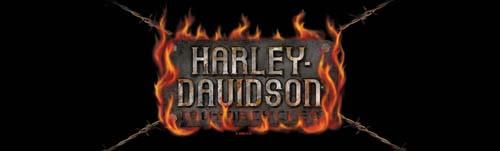 Plate Heat Harley-Davidson Rear Window Graphic - Custom Vinyl Graphics