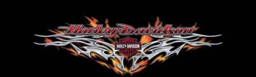 Steel Heart Harley-Davidson Rear Window Graphic - Custom Vinyl Graphics