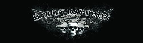 Triple Skulls Harley-Davidson Rear Window Graphic - Custom Vinyl Graphics