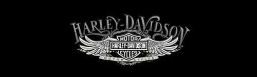 Wire Wing Harley-Davidson Rear Window Graphic - Custom Vinyl Graphics