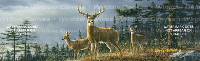 Autumn Whitetails Rear Window Graphic - Custom Vinyl Graphics