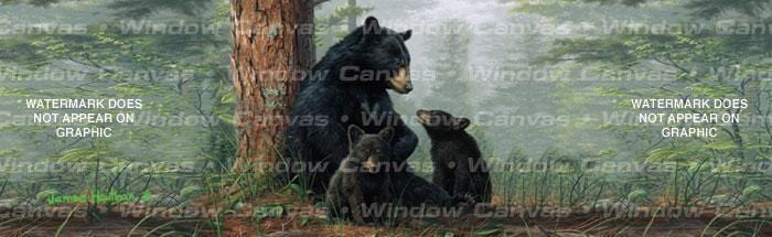 Bear Family Rear Window Graphic - Custom Vinyl Graphics