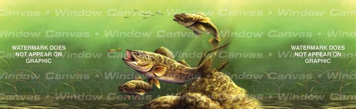 Feeding Walleyes Rear Window Graphic - Custom Vinyl Graphics