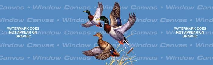Mallard Trio Rear Window Graphic - Custom Vinyl Graphics