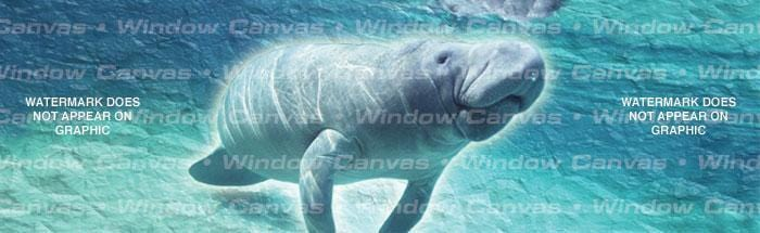 Manatee Rear Window Graphic - Custom Vinyl Graphics