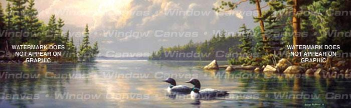 Summertime Loons Rear Window Graphic - Custom Vinyl Graphics