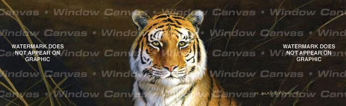 Tiger Portrait Rear Window Graphic - Custom Vinyl Graphics